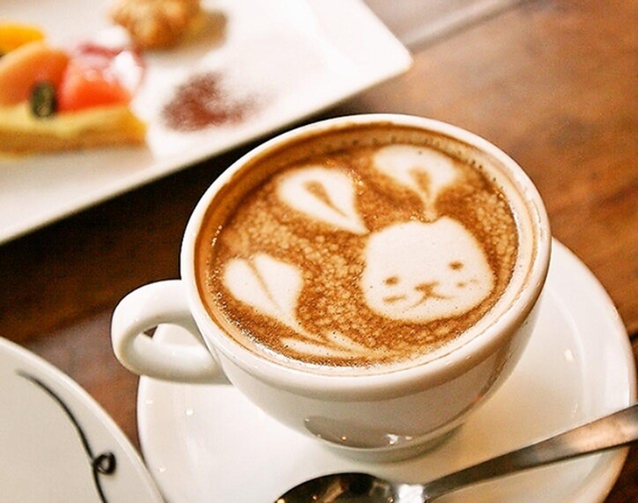 coto CAFE