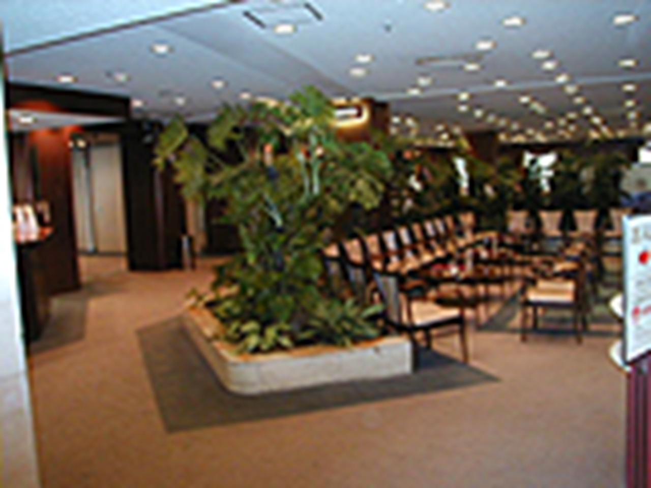 日本橋高島屋特別食堂