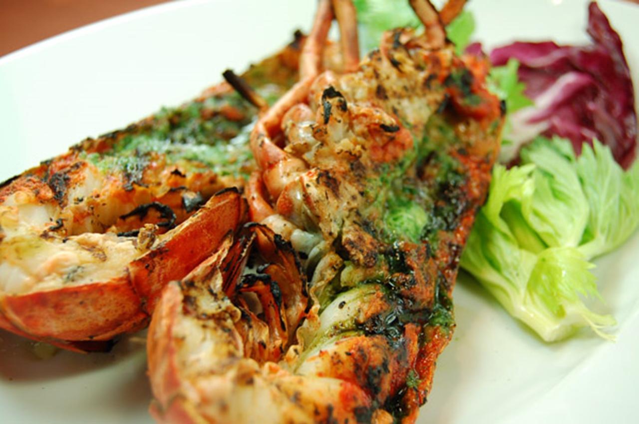 OCEAn Casita Italian seafood grill