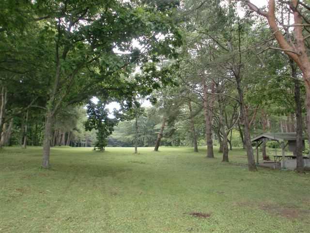 カワヨグリーン牧場キャンプ場