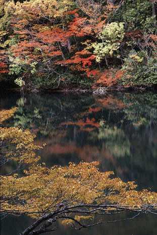 津軽国定公園十二湖