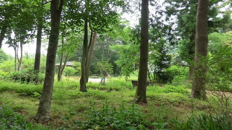 大年寺山公園