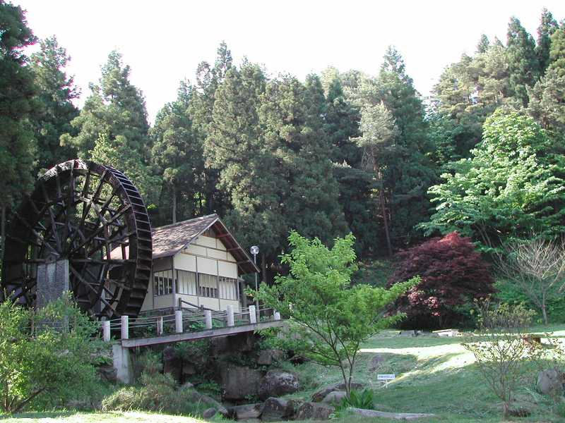 峠の森自然公園