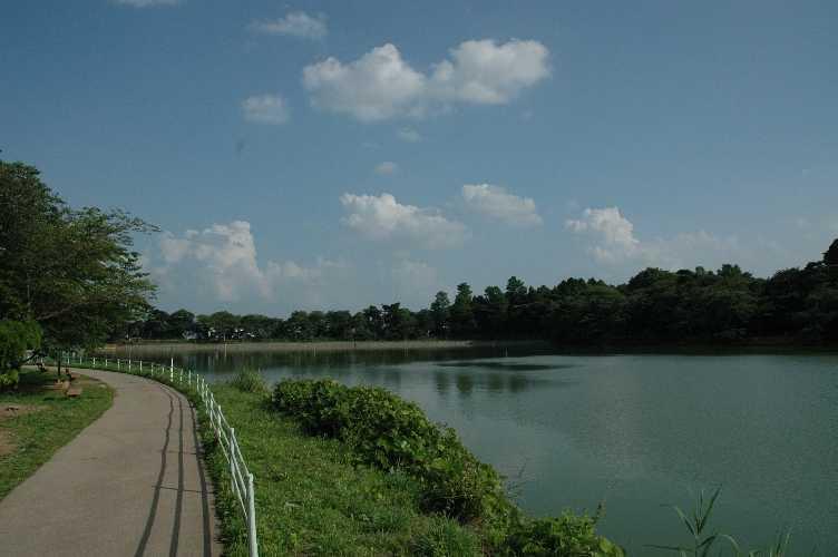 五百渕公園