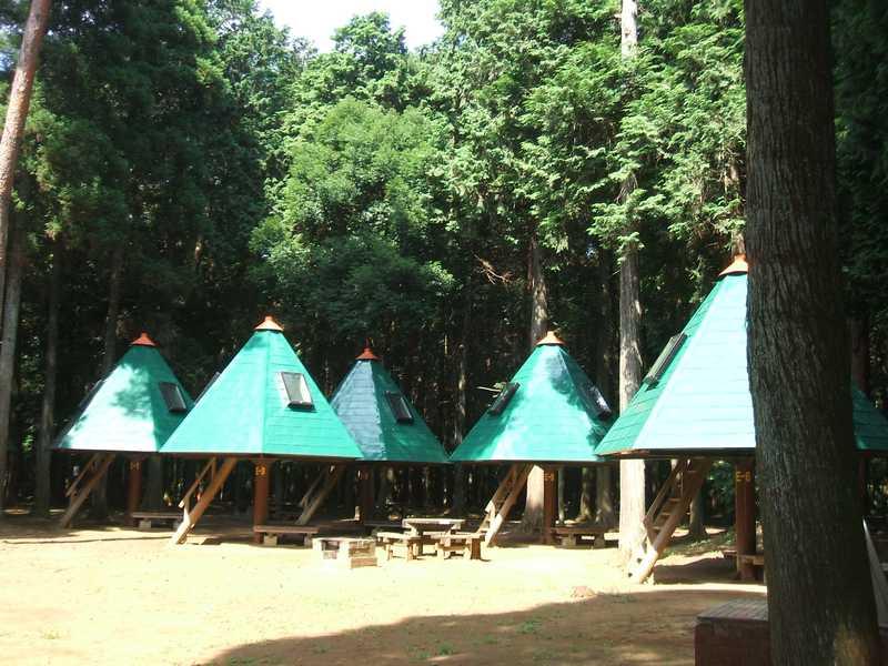龍ヶ崎市森林公園