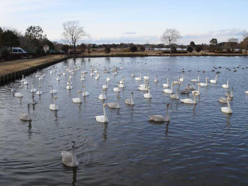 小吹水源池公園