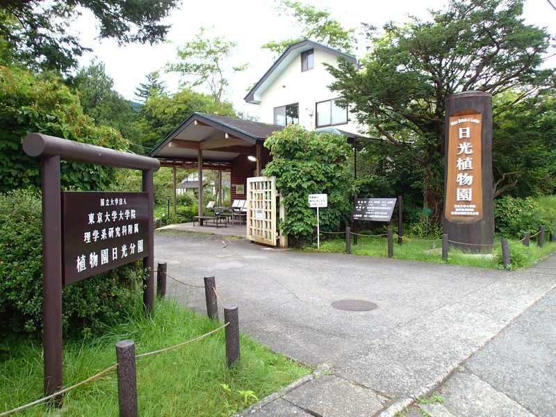 東京大学大学院理学系研究科附属植物園日光分園