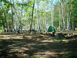 水上宝台樹やすらぎの森キャンプ場
