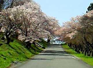 秩父聖地公園