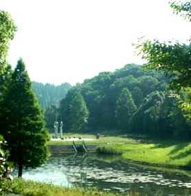 あすみが丘水辺の郷公園