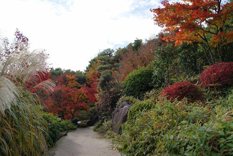 豊島区立目白庭園