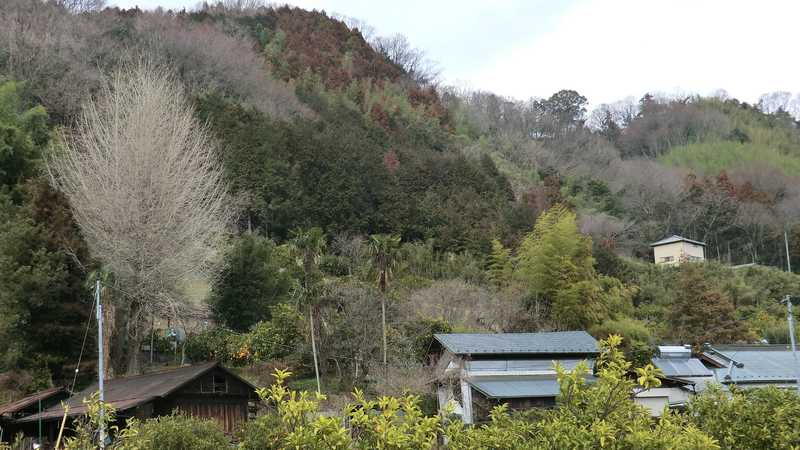 河村城址歴史公園