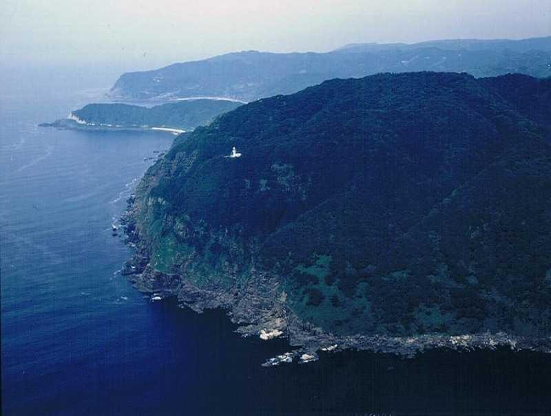 猿山岬の画像