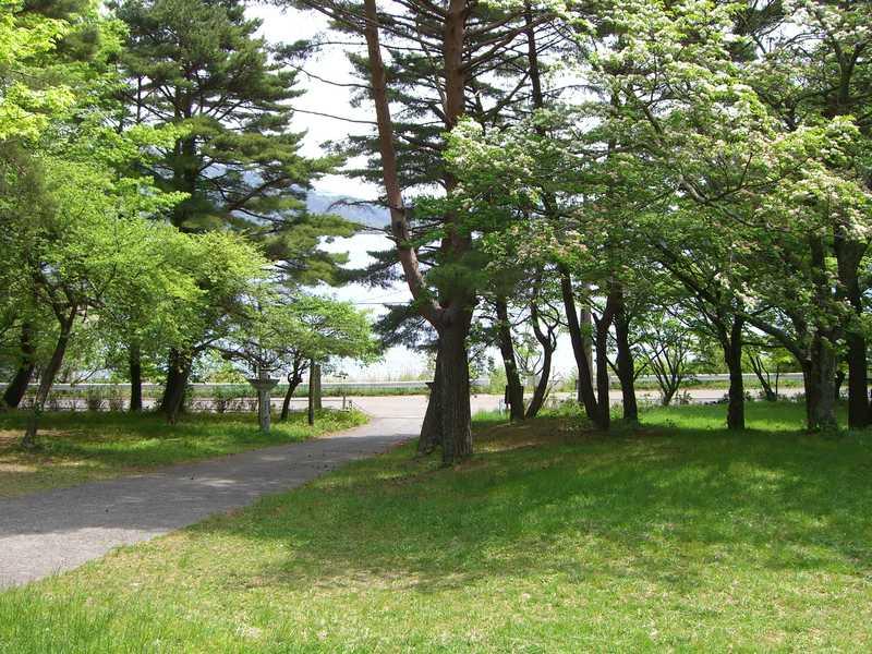 本栖湖いこいの森キャンプ場