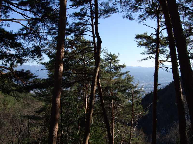 野底山森林公園キャンプ場