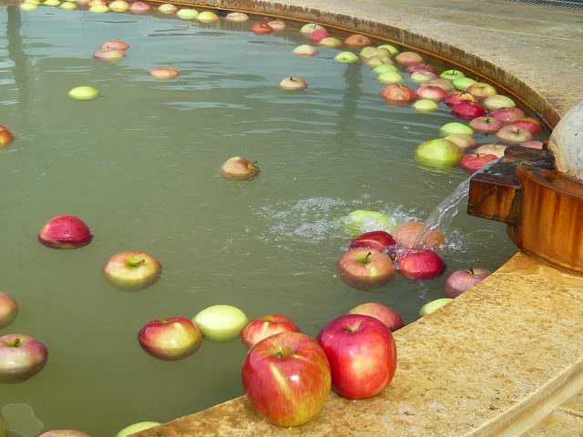 豊野温泉りんごの湯