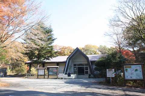 富士市丸火自然公園キャンプ場
