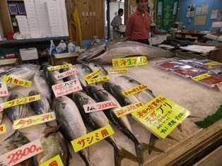 豊浜魚ひろば