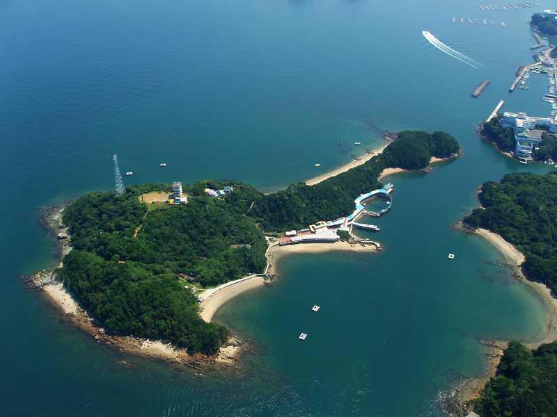 イルカ島海洋遊園地
