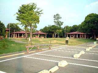 大阪市立信太山青少年野外活動センターキャンプ場