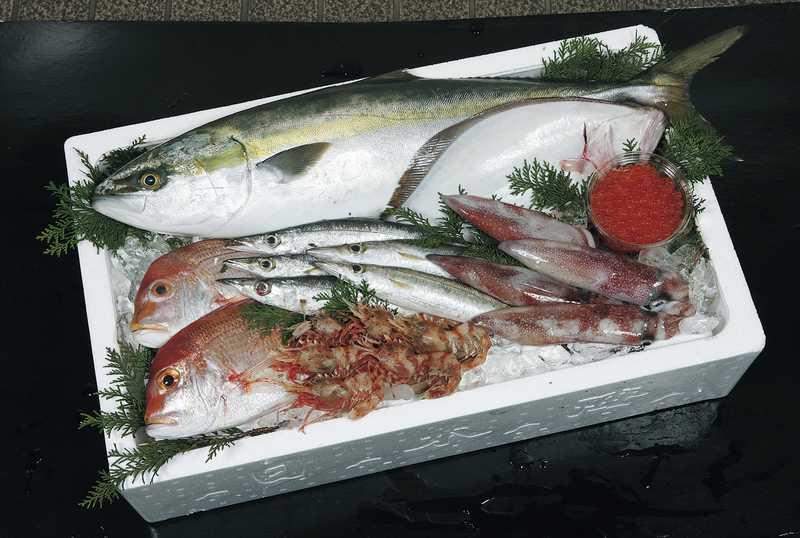 赤碕町漁協活魚鮮魚直売センター