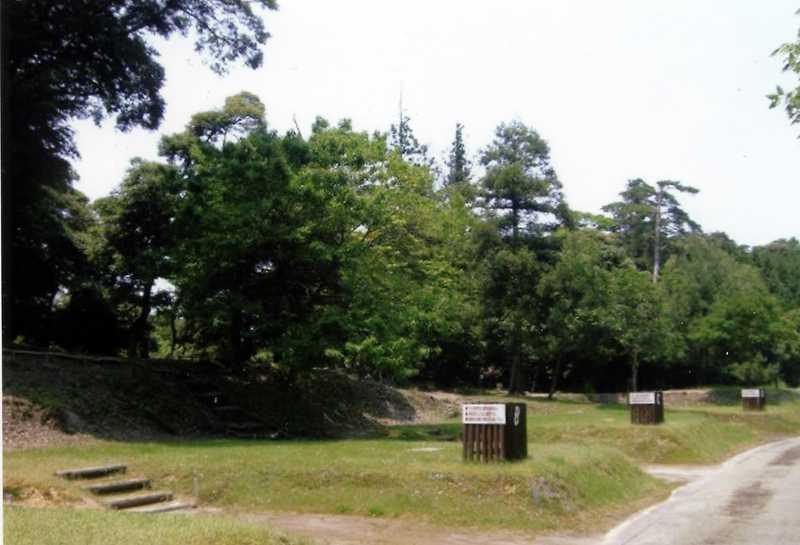 うさぎ森林公園夢の森うさぎ