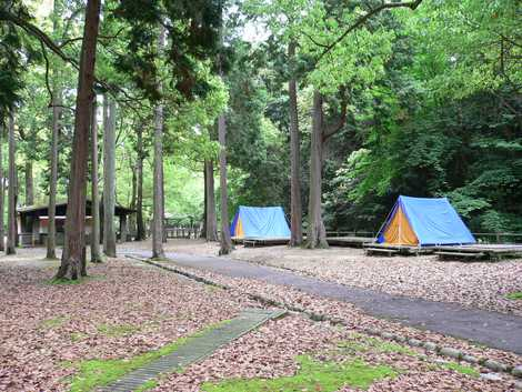 宮島包ヶ浦自然公園キャンプ場の画像