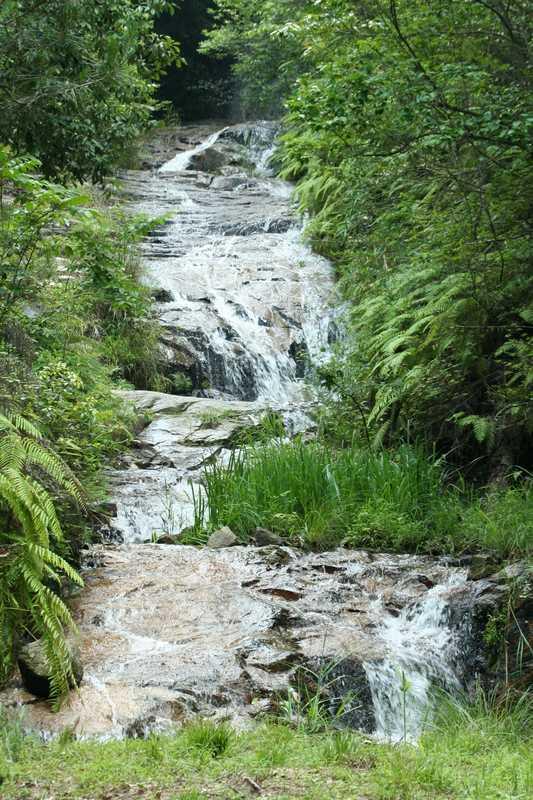 水分峡森林公園キャンプ場