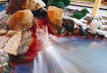 宇品天然温泉ほの湯