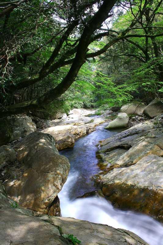 足摺宇和海国立公園滑床渓谷