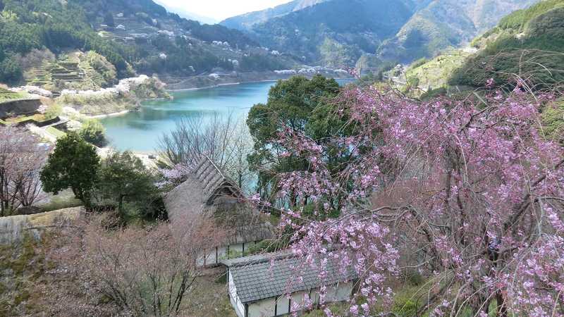 仁淀川町大渡ダム公園
