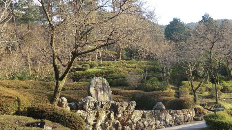 太郎川公園