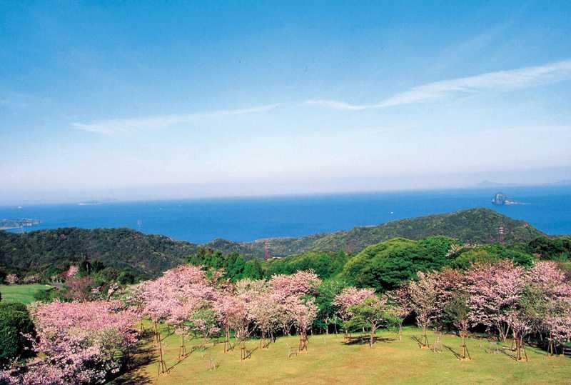 百合ヶ岳公園