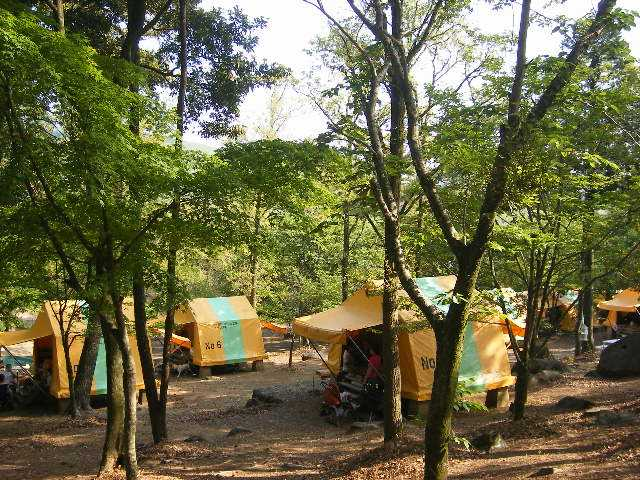 長崎県 柚木川内キャンプ場 の写真g8270