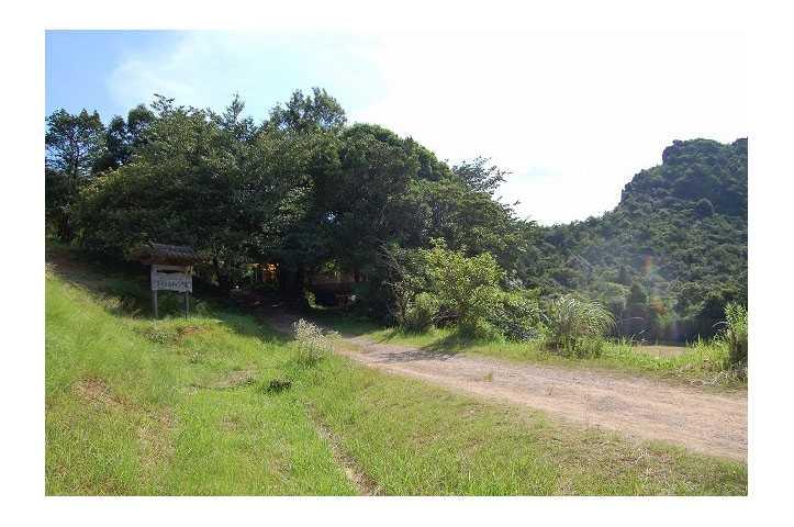 県立天草青年の家千元の森キャンプ場