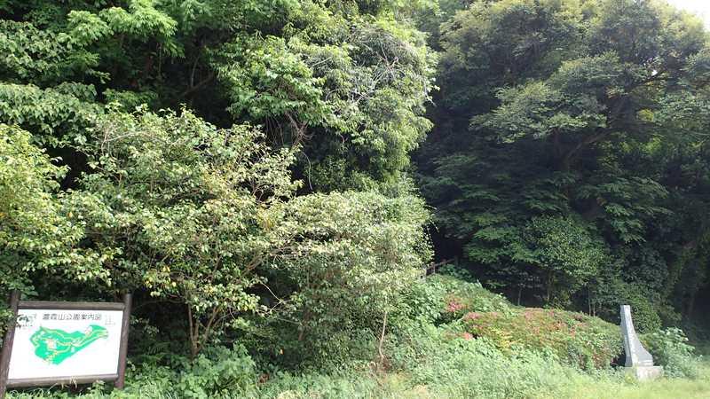 濃霞山公園