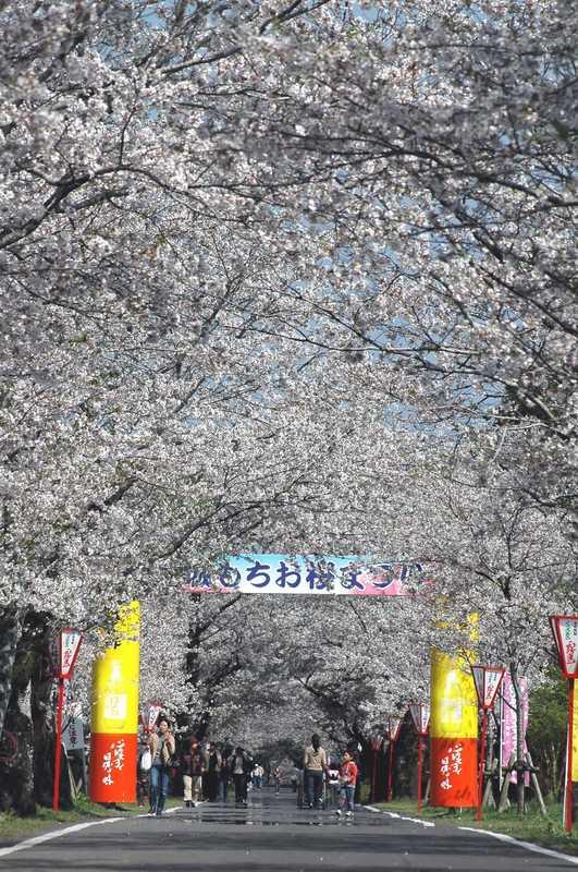 母智丘関之尾県立公園