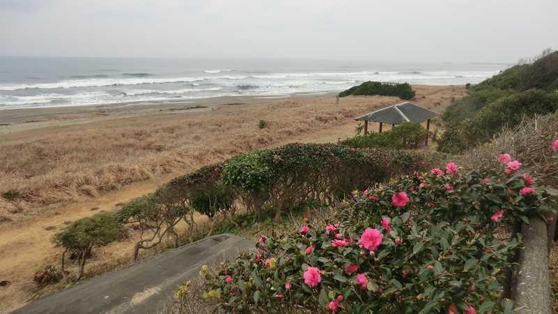 伊倉浜自然公園