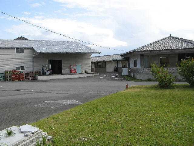 白露観光工場