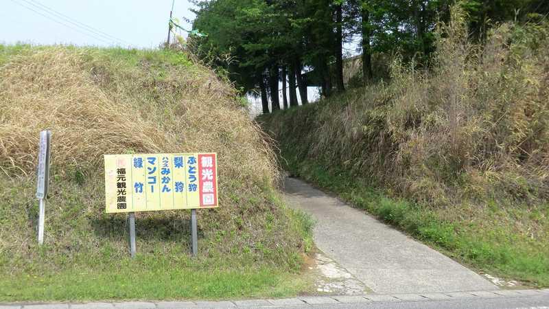 福元観光農園