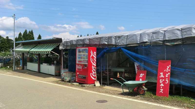 音川観光農場
