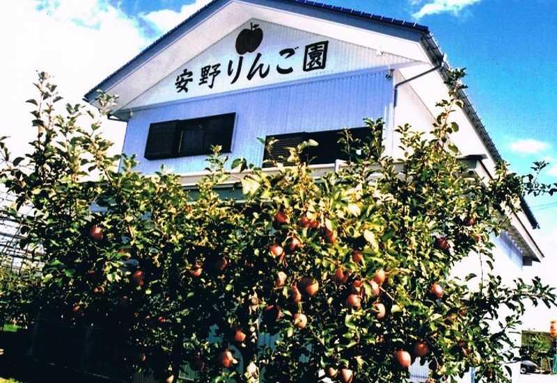 安野りんご園
