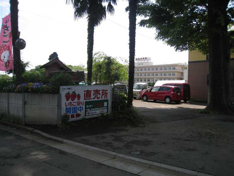 新井ファームはっぴーいちご園