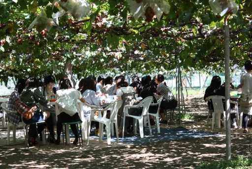 世界の葡萄豊玉園