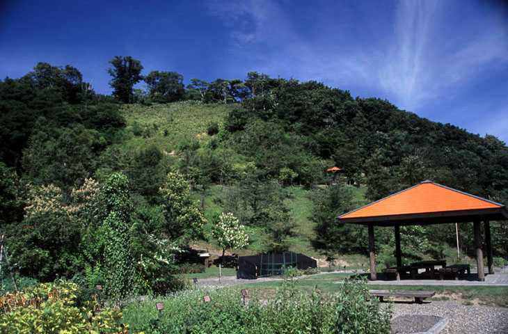 北海道医療大学薬学部付属薬用植物園・北方系生態観察園