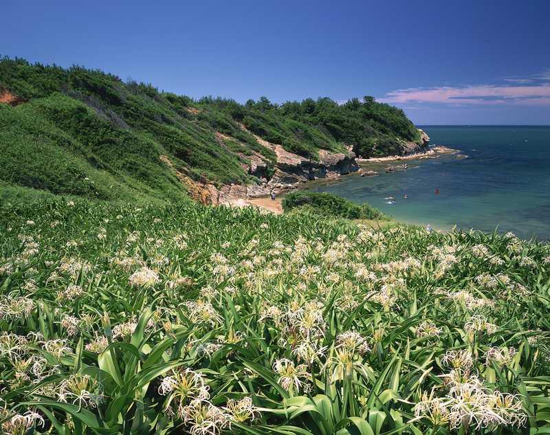 浜の宮海岸