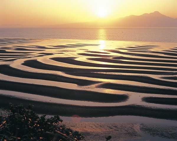 有明海・砂干潟