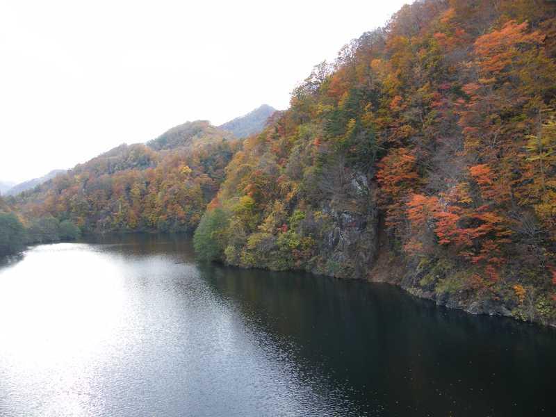 鳥崎川渓谷