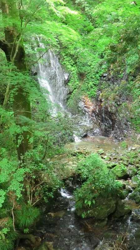 玉簾の滝の画像