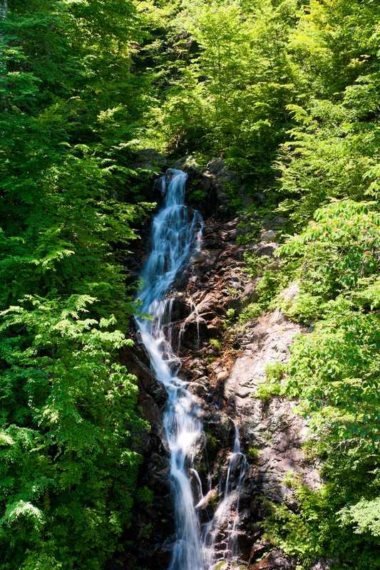 三頭大滝の画像